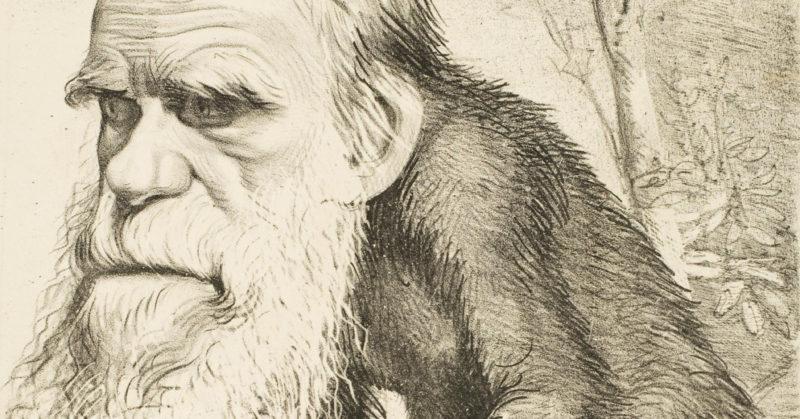 Le créationnisme: faut-il en rire ou en pleurer?